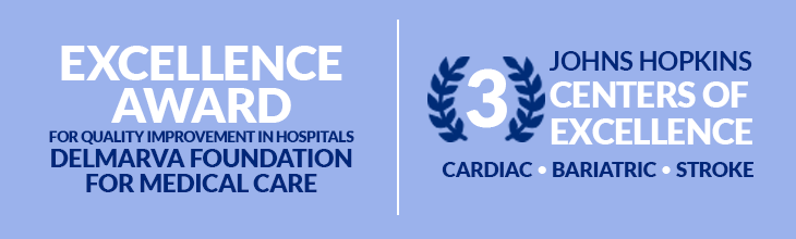 Excellence Award for Quality Improvement in Hospitals - Delmarva Foundation for Medical Care | 3 Johns Hopkins Centers of Excellence - Cardiac, Bariatric, Stroke